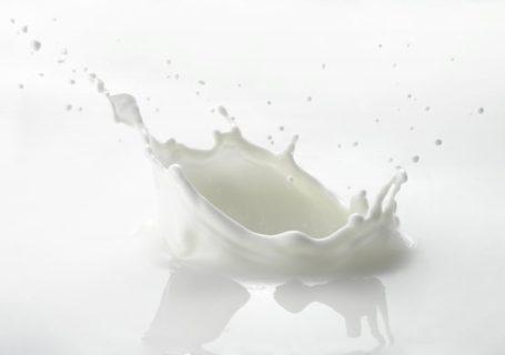 mýty o mléce